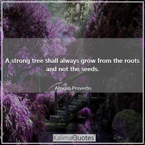A strong tree shall always grow from the roots and not the seeds.