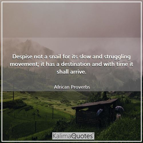 Despise not a snail for its slow and struggling movement; it has a destination and with time it shall arrive.