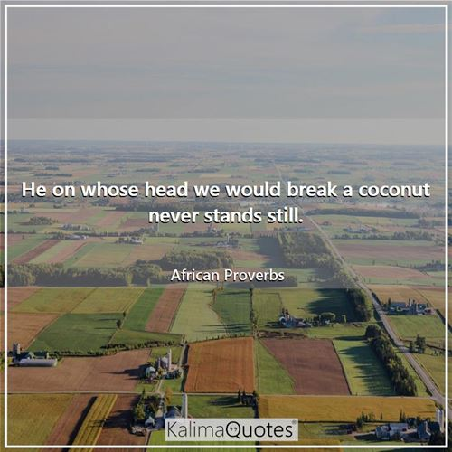 He on whose head we would break a coconut never stands still. - African Proverbs