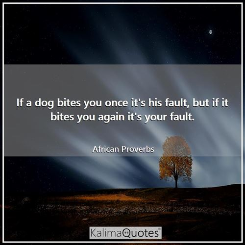If a dog bites you once it's his fault, but if it bites you again it's your fault.