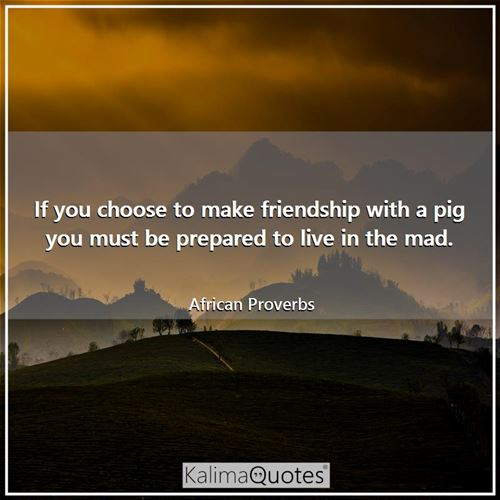 If you choose to make friendship with a pig you must be prepared to live in the mad. - African Proverbs