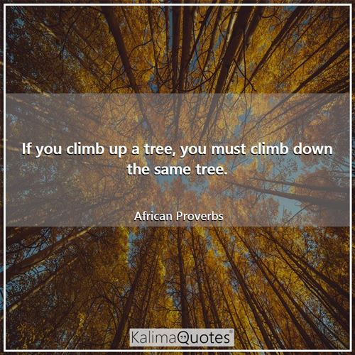 If you climb up a tree, you must climb down the same tree. - African Proverbs