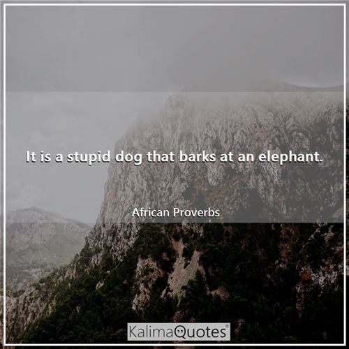 It is a stupid dog that barks at an elephant.