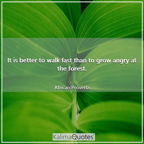 It is better to walk fast than to grow angry at the forest. - African Proverbs