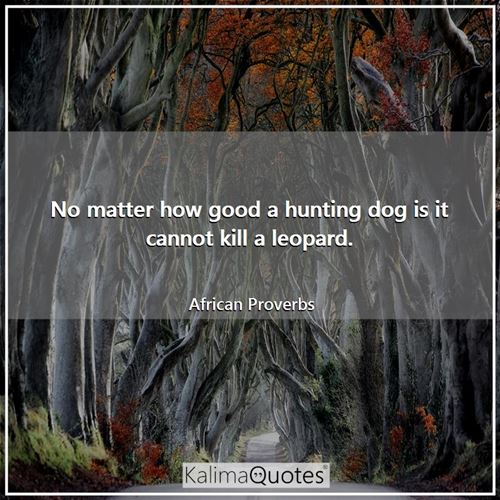 No matter how good a hunting dog is it cannot kill a leopard.