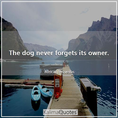 The dog never forgets its owner.