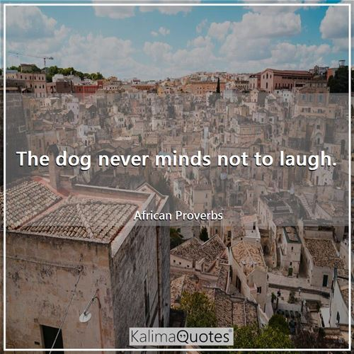 The dog never minds not to laugh. - African Proverbs