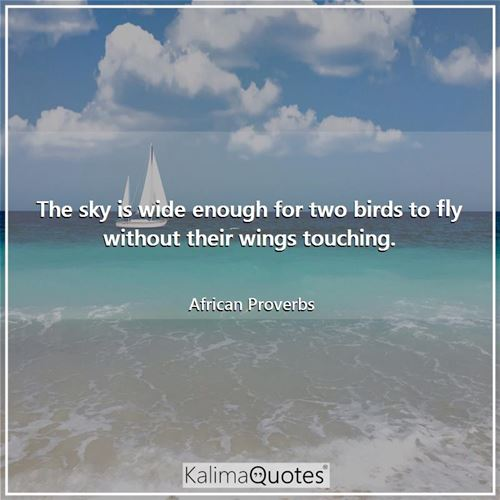 The sky is wide enough for two birds to fly without their wings touching. - African Proverbs