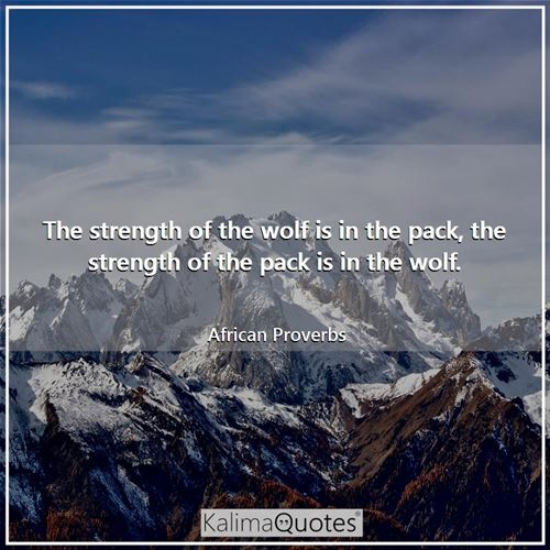The strength of the wolf is in the pack, the strength of the pack is in the wolf.