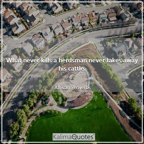 What never kills a herdsman never takes away his cattle.