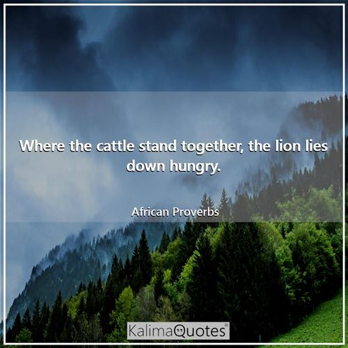 Where the cattle stand together, the lion lies down hungry.