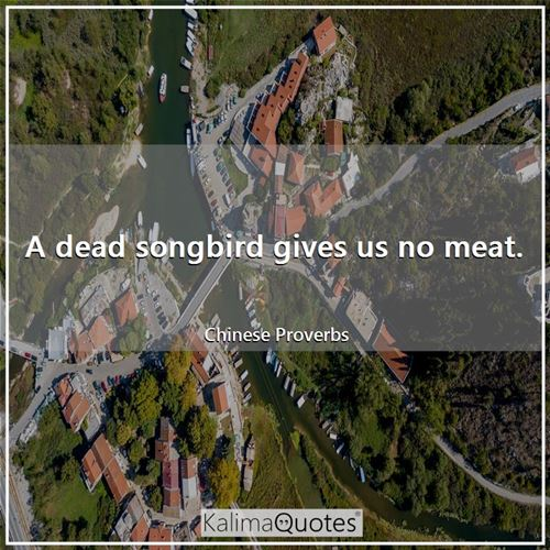 A dead songbird gives us no meat.