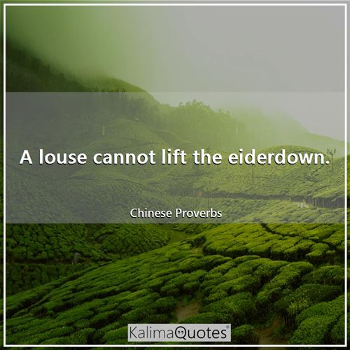 A louse cannot lift the eiderdown.