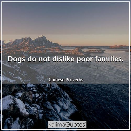 Dogs do not dislike poor families. - Chinese Proverbs