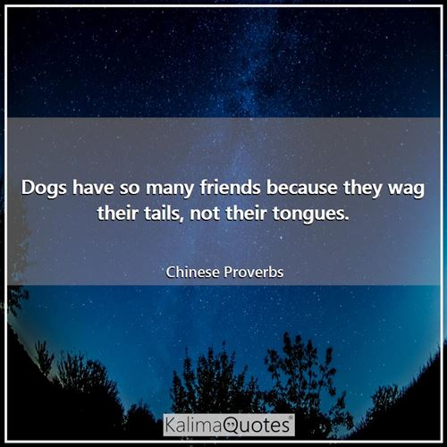 Dogs have so many friends because they wag their tails, not their tongues. - Chinese Proverbs