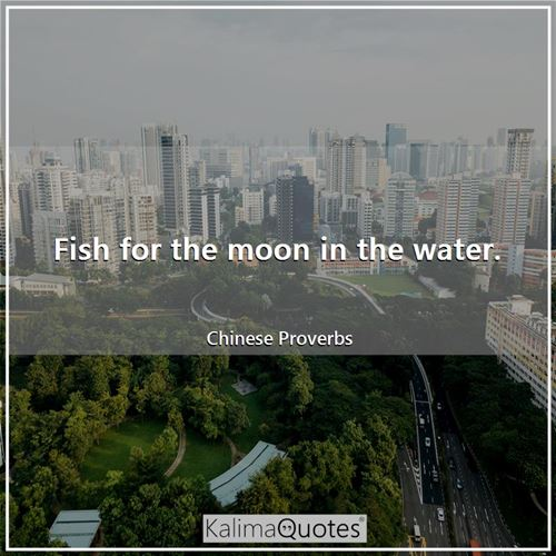 Fish for the moon in the water.