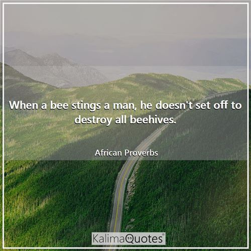 When a bee stings a man, he doesn't set off to destroy all beehives. - African Proverbs