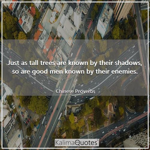 Just as tall trees are known by their shadows, so are good men known by their enemies. - Chinese Proverbs