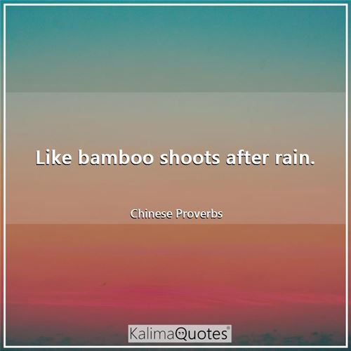 Like bamboo shoots after rain.