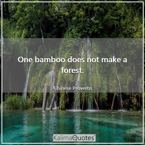 One bamboo does not make a forest. - Chinese Proverbs