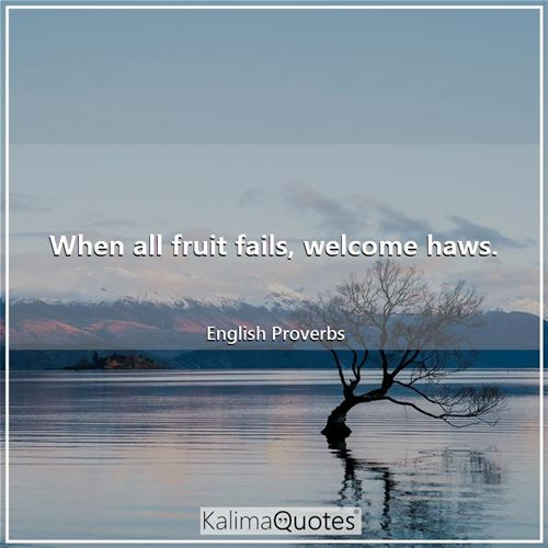 When all fruit fails, welcome haws. - English Proverbs