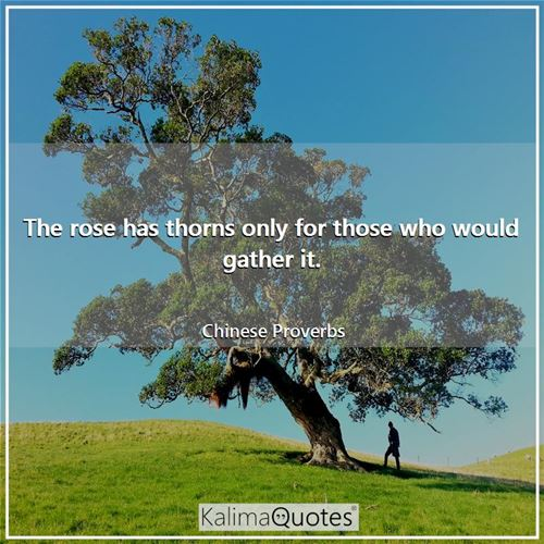 The rose has thorns only for those who would gather it. - Chinese Proverbs